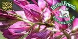 Esparcette Herbal Friends 20 kg _