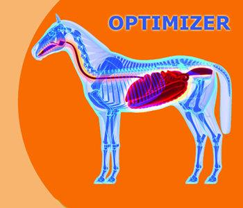 Healthy Gut Optimizer 1,5 en 5 kg