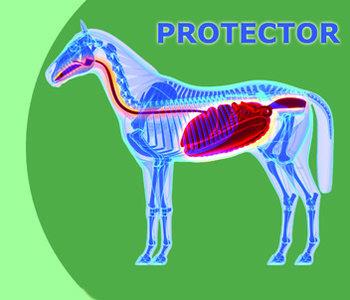 Healthy Gut Protector 2 en 5 kg
